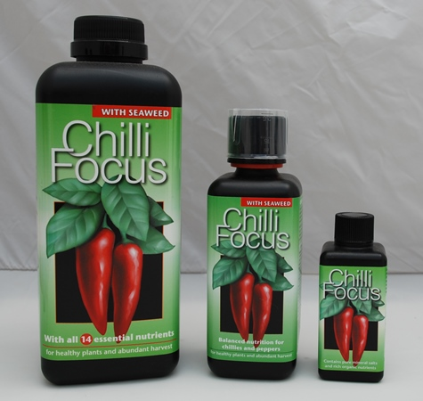 Chilli Focus 300ml Bottle