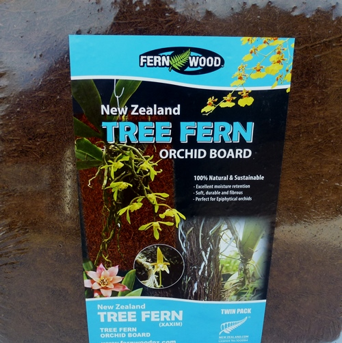 Orchid Tree Fern Slabs, 30x30x2.5cm Twin Pack