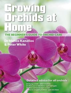 GROWING ORCHIDS IN THE HOME...